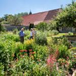 Kräutergarten Inzigkofen - Garten mit vielen verschiedenen Kräutern